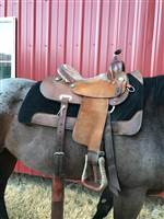 Barrel Racing at Barrel Horse World, Barrel Horses for Sale