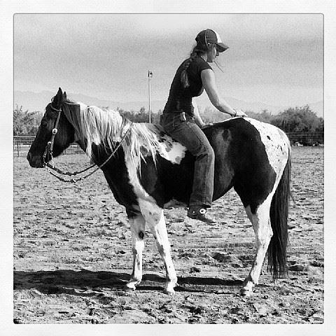 Br Smart N Fancy Barrel Horse World