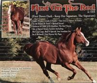 Sire of HF SHOWED UP IN BOOTS